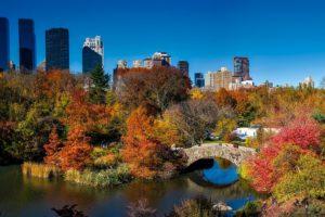 Central Park, New York City, Urbaines, Automne, Coloré